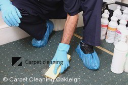 Carpet Cleaning Oakleigh 3166