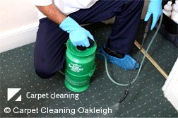 Carpet Cleaners Oakleigh 3166