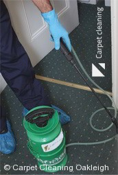 Professional Carpet Cleaners Oakleigh 3166