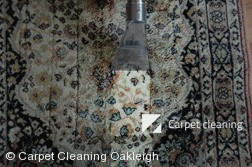 Oakleigh 3166 Rug Cleaning Services