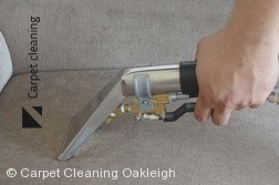 Professional Upholstery Cleaning in Oakleigh