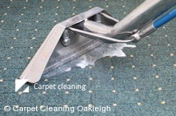 Rug Cleaning Oakleigh