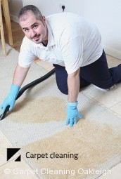 Professional carpet Cleaning Services in Oakleigh
