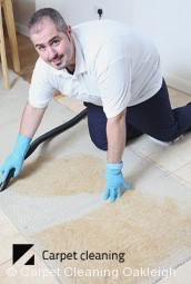Oakleigh Professional Dry Carpet Cleaning
