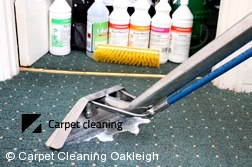 Oakleigh 3166 Steam Carpet Cleaning Services
